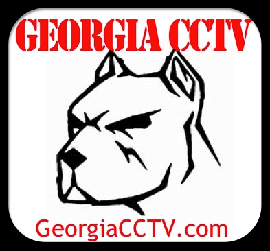 georgiacctv.com